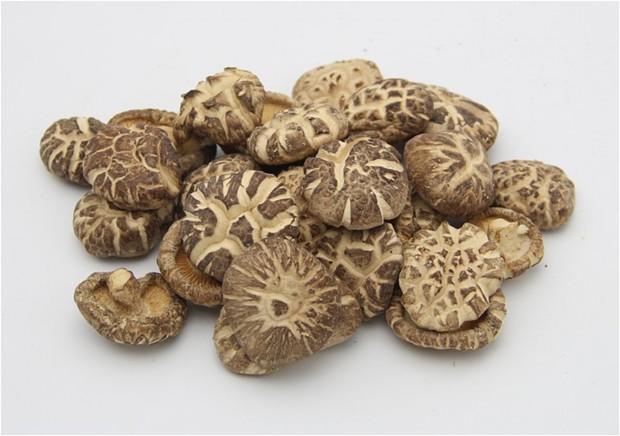 표고버섯1.jpg