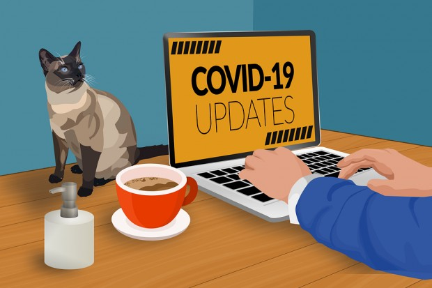 covid-19-4938932_960_720.png